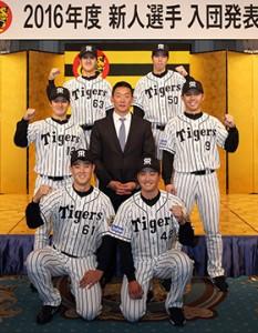 tigers1208